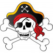 Pirate skull theme 1 — Stock Vector