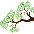 Royalty-Free Stock Vector Image: Tree branch with green leaves 1
