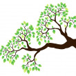 Tree branch with green leaves 1 — Imagen vectorial