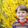 Portrait of little smiling boy in spring garden. — Stock Photo