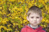 Portrait of little smiling boy in spring garden. — Stock Photo