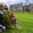 Stock Photo: Restormell castle