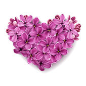 Heart from flowers of a lilac. — Stock Photo
