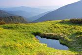 Mountain landscape — Zdjęcie stockowe