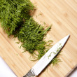 Stock Photo: Cut dill