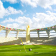 Olympic Stadium - Olympic disciplines of launch - Stock Photo