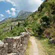 Kotor. — Stock Photo #9751920