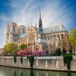Notre dame de Paris - France — Stock Photo #10201827