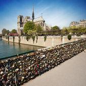 Notre dame de Paris - France — Стоковое фото