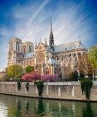 Notre dame de Paris - France — Stock Photo