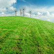 Green field and blue sky - 