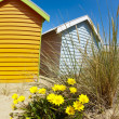 Bathing boxes on Brighton beach next to Melbourne, Australia - Stock Photo