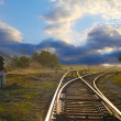 Landscape with railroad rails — Stock Photo #7963042