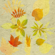 Textured background with autumn leaf - ストック写真
