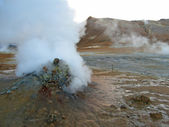 Erupting geyser of steam, Iceland — Stock Photo