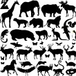 Big zoo — Stock Vector