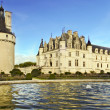 Chenonceau castle — Stock Photo #9143296
