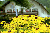 Flowers and house in Bavaria — Stock Photo