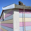 Close up of colourfiul shed or beach hut — Stock Photo