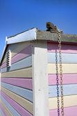 Cerca de colourfiul caseta o choza de la playa — Foto de Stock