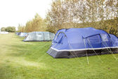 Tents in a row on a campsite — Stock Photo
