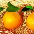 Stock Photo: Oranges and lemons, fresh citrus fruits