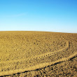 Ploughed field  background -  