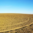 Ploughed field  background - Stock Photo