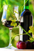 Glass and bottle of red wine with red fruits — Foto de Stock