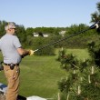 Roof top tree trimming — Stock Photo #10662954