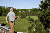Roof top tree trimming — Stock Photo