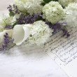 Hydrangeflower bouquet on old script — Stock Photo #10635976