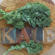 Kale leaves with word — Stock Photo