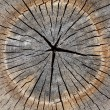 Wooden structure for a background - Stockfoto