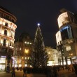 Christmas tree, St. Stephen's Square in Vienna — Stock Photo