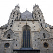 AustriVienna, St. Stephens Cathedral — Stock Photo #10507829