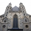 Austria Vienna, St. Stephens Cathedral — Stock Photo #10507829