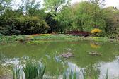 Zagreb Botanical Garden — Stock Photo