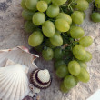Stock Photo: Mediterranean: grapes and shells
