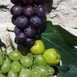 Stock Photo: Mediterranean: grapes and figs