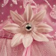 Stock Photo: Pink flower detail