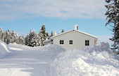 Winter wonderland — Stock Photo