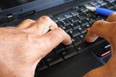 Hands typing — Fotografia Stock