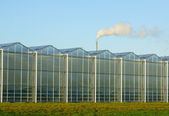 Greenhouse with greenhouse gas — Stock Photo