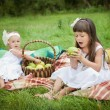 Happy children playing outdoors in spring park. Family picnic — Stock Photo