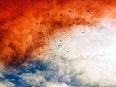 Apocalyptic sky — Stock Photo