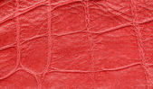 Red gridded leather texture — Stock Photo