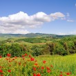 Royalty-Free Stock Photo: Tuscany