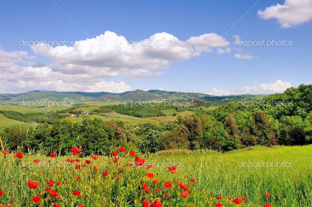 A beautiful landscape in springtime along the roads of Tuscany — Stock Photo #10504057