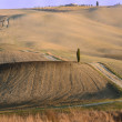 Stock Photo: Crete Senesi